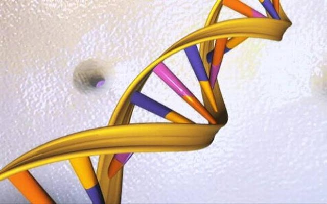 The science behind gene editing