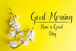 Good Morning Royal Images Download for Whatsapp Facebook62