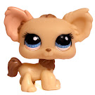 Littlest Pet Shop Large Playset Chihuahua (#1171) Pet