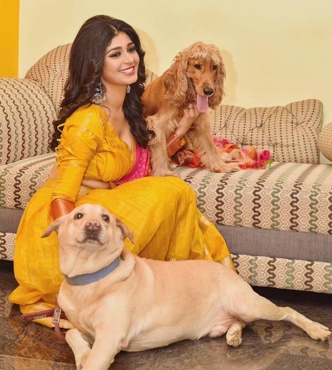 Sandalwood beauty Aditi Prabhudeva' stunning Photo Gallery! 3