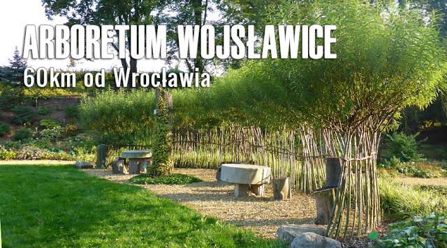 Arboretum Wojsławice - super na niedzielny spacer Dolny Śląsk