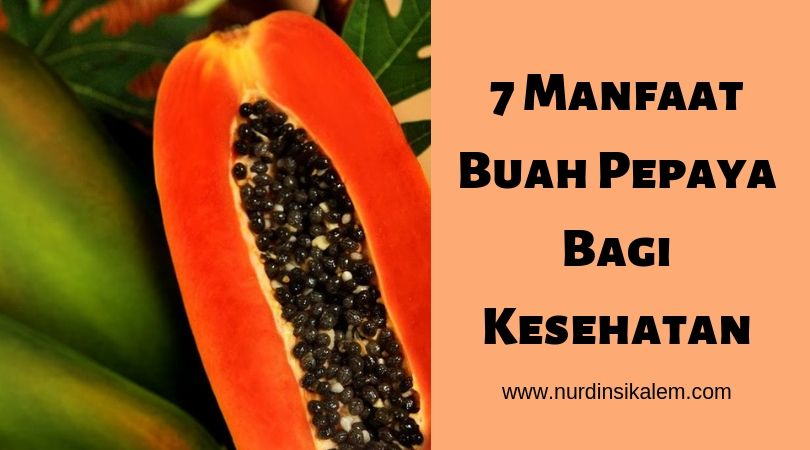7 manfaat buah pepaya