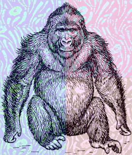 Penda the ape