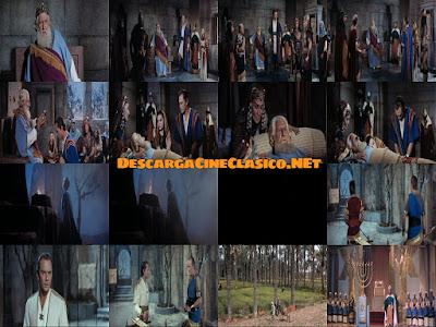 Descargar película: Salomón y la reina de Saba (1959) Solomon and Sheba