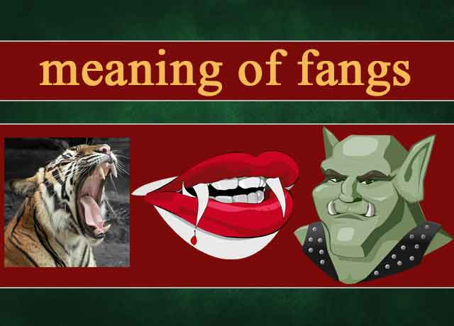 meaning of fangs