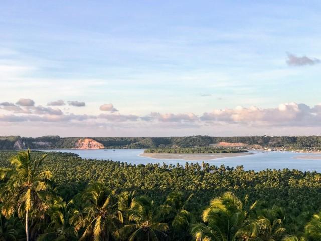 Vista da Lagoa do Roteiro e Coqueiral da Praia do Gunga