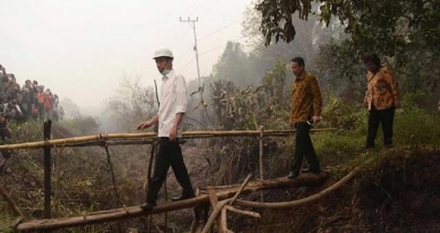 Divonis Bersalah, Jokowi Diminta Bangun RS Paru-Paru Korban Kebakaran Hutan