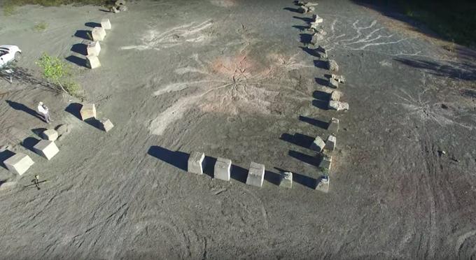 385 millió éves erdő maradványait találták meg New York államban