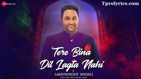 Tere Bina Dil Lagta Nahi Lyrics in Hindi Font |  Lakhwinder Wadali, Anmol Malik