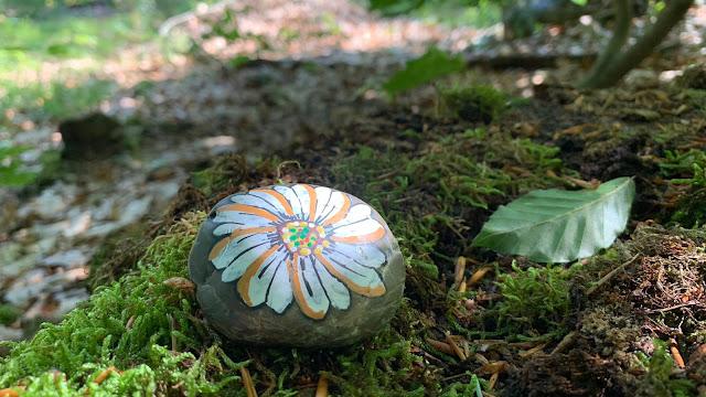 beschilderde steen in het bos