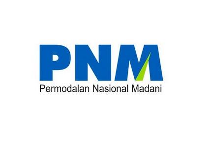 Lowongan Kerja PT Permodalan Nasional Madani (Persero) Desember 2020