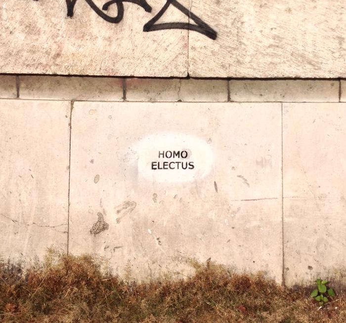 homo electus, Warschau, Warszawa, Sejm-Wahlen 2015