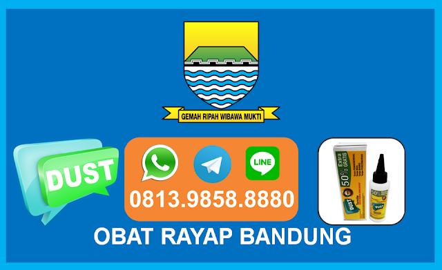 Toko Obat Anti Rayap di Bandung