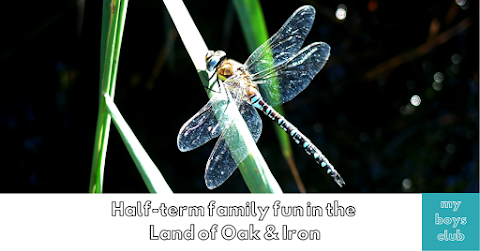 Half-term family fun in the Land of Oak & Iron (AD)