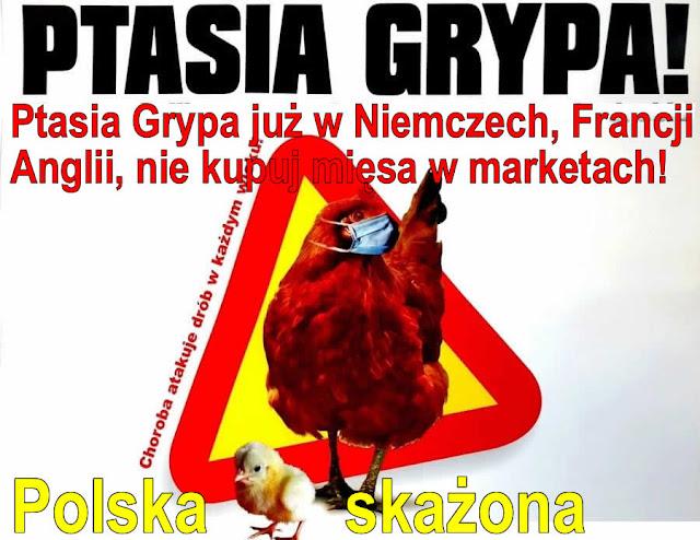 Ptasia Grypa już w Niemczech, Francji i Anglii, nie kupuj mięsa w marketach!