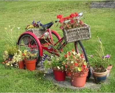Anda juga bisa menambahkan keranjang atau pot bunga pada sepeda kalau mau. Sepeda roda tiga anda menciptakan kesan unik dan menarik di kebun, taman, atau halaman rumah.