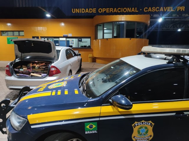 PRF apreende mais de meia tonelada de maconha no Paraná