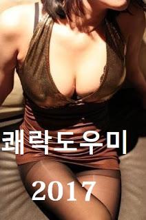 Pleasure Guide (2017) [เกาหลี18+]