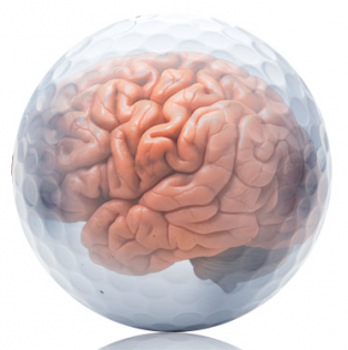 dec16-ball-and-brain_372x374_0.jpg