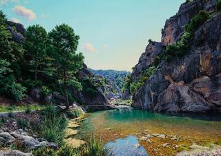 naturales-panoramas-pinturas