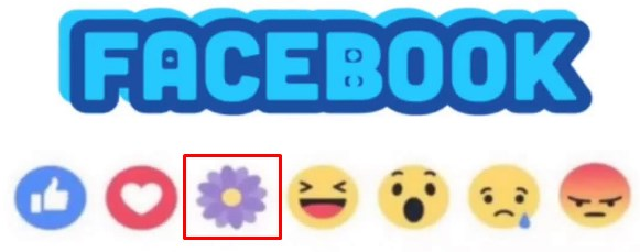 what does the flower symbol mean on facebook
