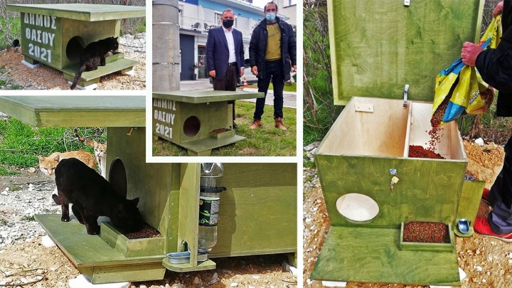 Ξύλινα σπιτάκια για τη φιλοξενία αδέσποτων ζώων τοποθετεί ο Δήμος Θάσου