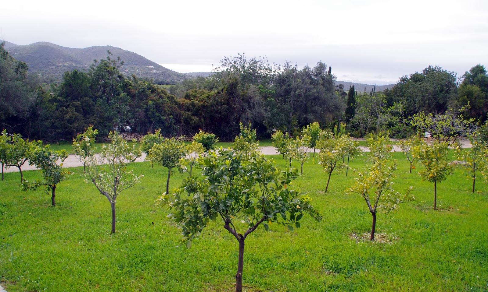 Beautiful grounds of Vila Monte Farm House Portugal
