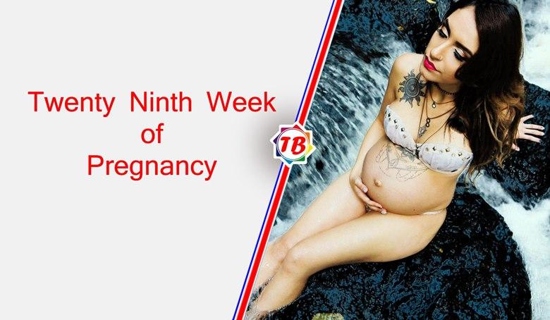Twenty Ninth Week of Pregnancy