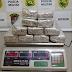 BPFron apreende menor que trazia 10 kg de maconha para Beltrão