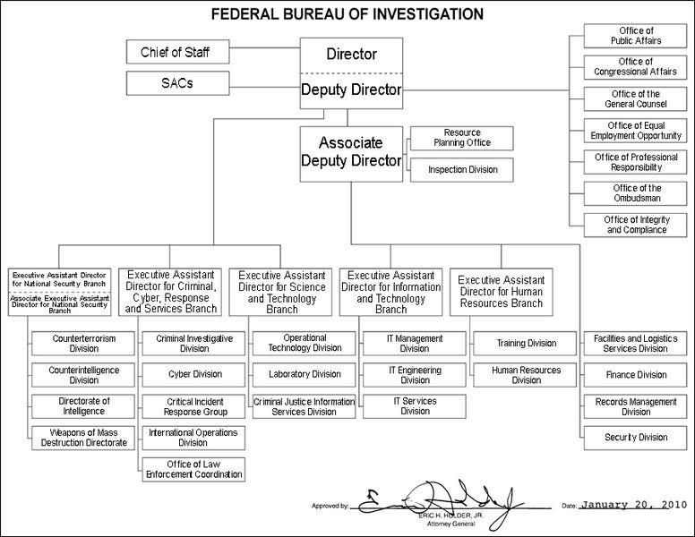 Download Free  FBI Organizational Chart