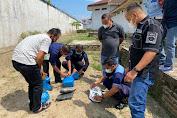 Sindikat Narkoba Lemparkan 7 Bal Ganja dan Sabu - sabu dari Luar Lapas