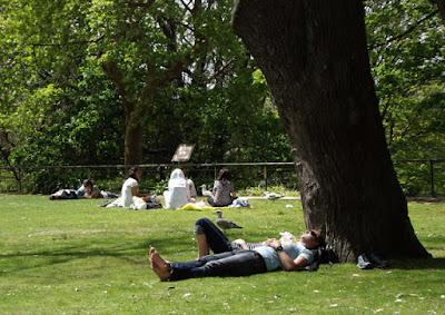 pessoas deitadas na relva ao sol
