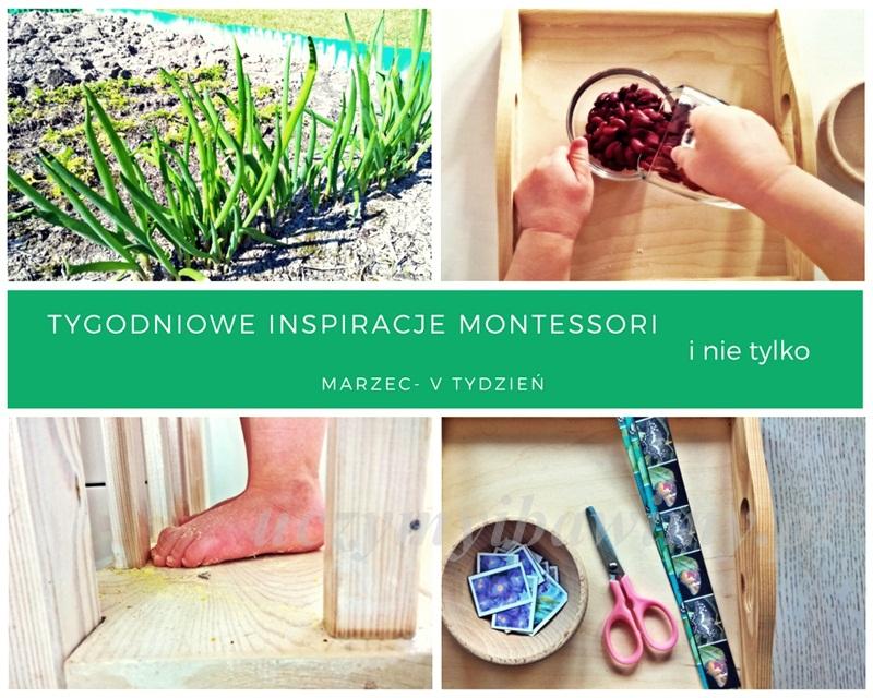 Tygodniowe inspiracje Montessori - MARZEC - V TYDZIEŃ