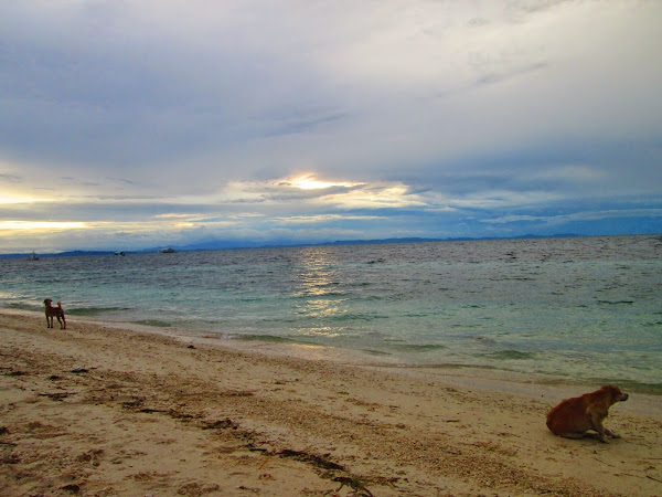 CLOUDY WITH A CHANCE OF AWESOME IN MALAPASCUA II