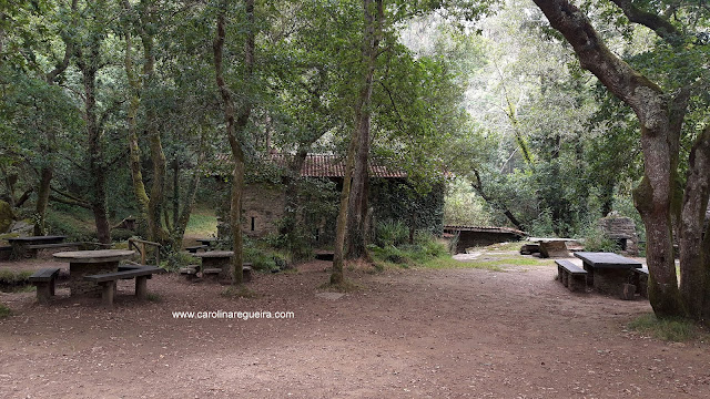 5 paseos por la naturaleza para este otoño refuxio verdes