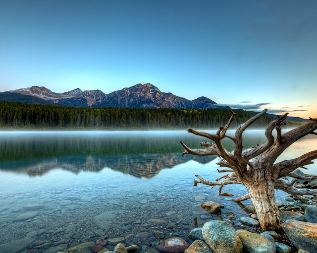 Jasper National Park hotels