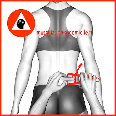 mesure bas du dos femme pince à plis cutanés adipomètre musculation fitness