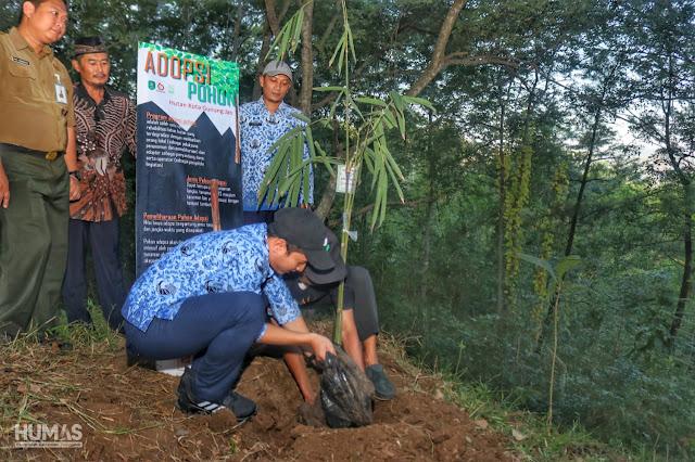 Bupati Trenggalek Tanam Pohon Ipin Saat Peringatan Hari Lingkungan Hidup Sedunia