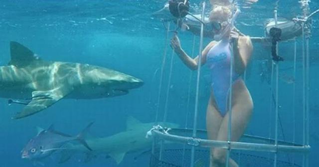 Pemotretan di Bawah Laut, Bintang Film Panas Ini Kakinya Digigit Hiu Lemon.. Netizen: Rekayasa untuk Naikkan Popularitas
