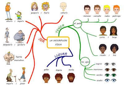Resultado de imagen de mapa mental descripcion fisica