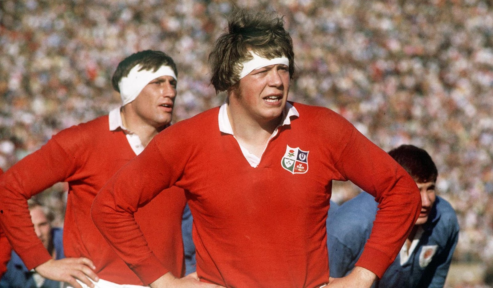 Aristotle Armstrong Scottish Rugby Philosopher It Won T Be Long Before It S Lions Time
