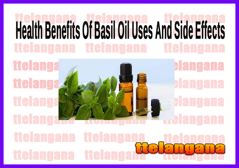 Health Benefits Of Basil Oil Uses And Side Effects