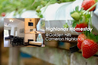 Apartment Homestay Murah Cameron Highland