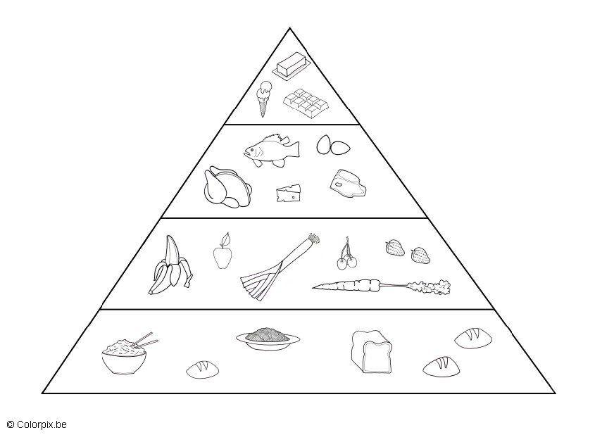Preferenza Progetto Alimentazione Scuola Primaria Schede UT84 » Regardsdefemmes LI95
