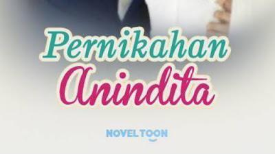 Novel pernikahan Anindita pdf