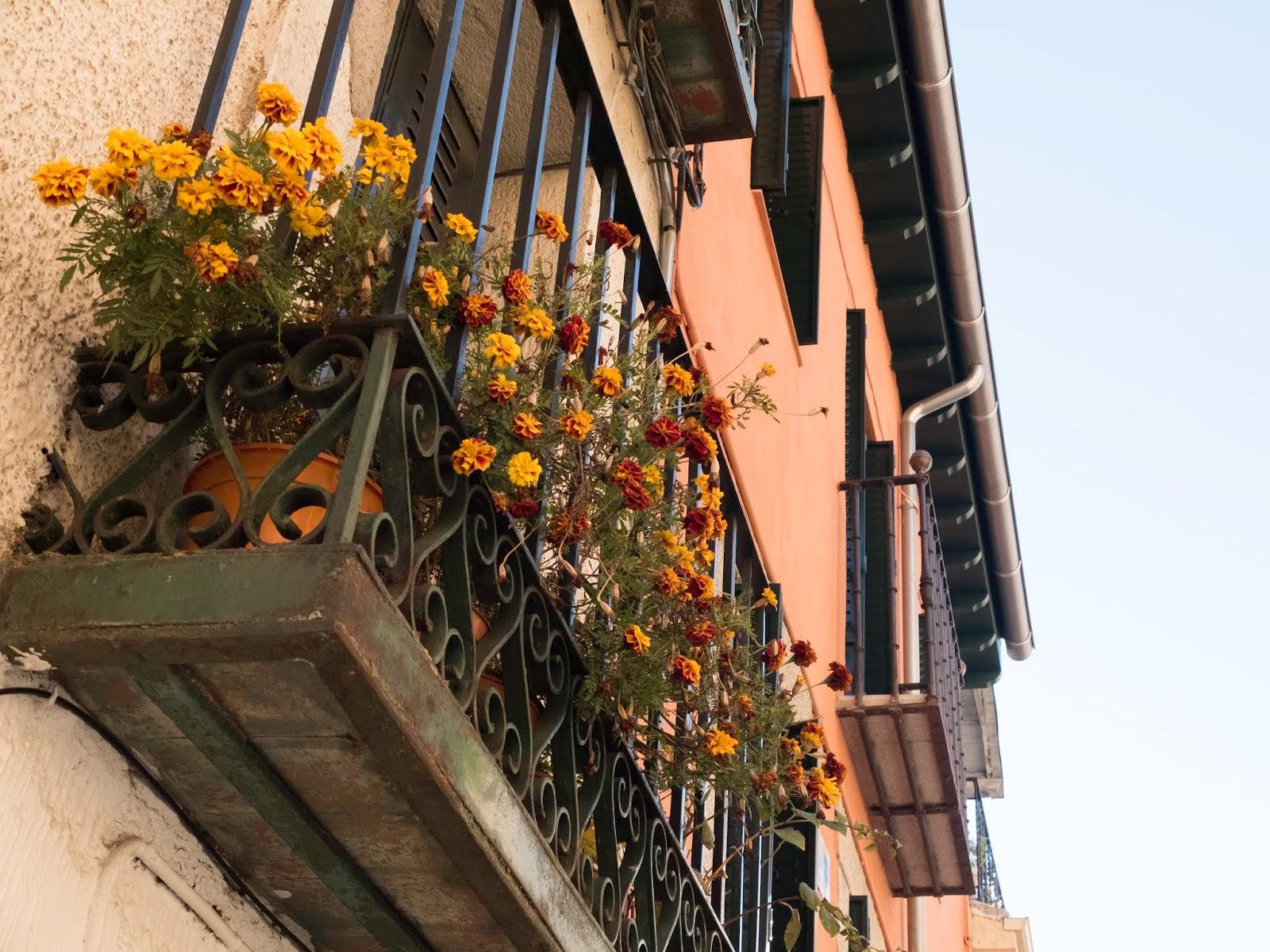 Balcón con Flores en Madrid, 2016