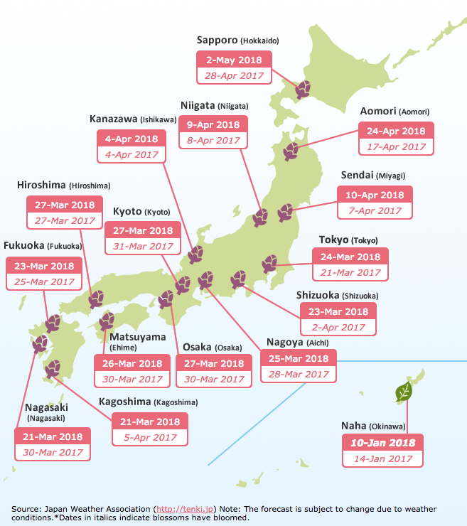 2018 Japan Cherry Blossom Forecast | www.bigdreamerblog.com