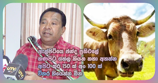 """To listen to talks about Elpitiya election results turned upside down ... we should have 150 hoofs and 100 horns"" -- SB"