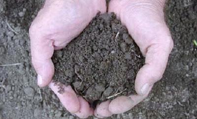Tanah untuk mensucikan najis besar - berbagaireviews.com
