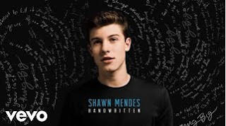 Download Lagu Shawn Mendes Imagination Mp3